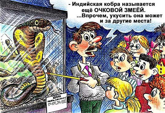 Самые смешные анекдоты про змей
