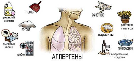 помощь при аллергии на амоксициллин